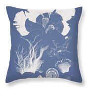 Martensia Elegans Hering Throw Pillow by Aged Pixel