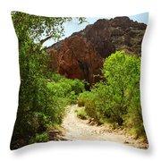 Martinez Canyon Throw Pillow
