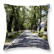 Marvao Portugal Throw Pillow