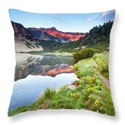 Marvelous Lake Throw Pillow