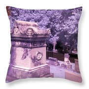 Mary And John Tyler Memorial Near Infrared Lavender And Pink Throw Pillow