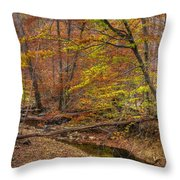 Maryland Country Roads - Autumn Colorfest No. 7 - Catoctin Mountains Frederick County Md Throw Pillow