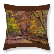 Maryland Country Roads - Autumn Colorfest No. 8 - Catoctin Mountains Frederick County Md Throw Pillow