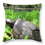 Maryland Spotted Turtle Throw Pillow