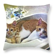 Mary's Cats Throw Pillow