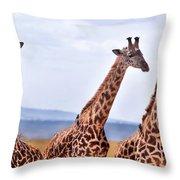 Masai Giraffe Throw Pillow