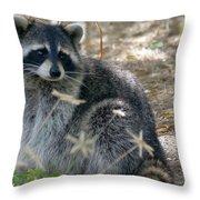 Masked Bandit Throw Pillow