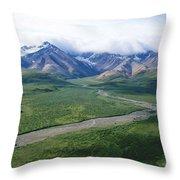 Mass Wilderness Throw Pillow