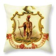 Massachusetts Coat Of Arms - 1876 Throw Pillow