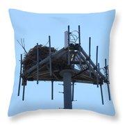 Massaive Nesting Throw Pillow