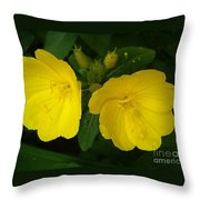 Matching Pair Throw Pillow