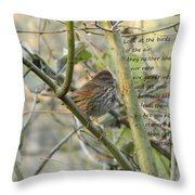 Mathew 6 Vs 26 Thrush Throw Pillow