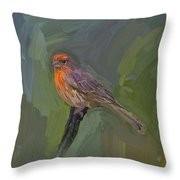 Mating Colors Of The Male Finch Throw Pillow