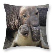 Mating Fun Throw Pillow
