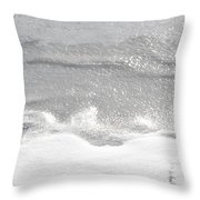 Matte And Lustre Throw Pillow