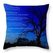 Matthew 7 15-20 Throw Pillow