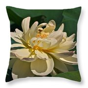 Mature Lotus Flower And Cute Hovering Honeybee Throw Pillow