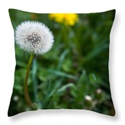 Maturity Throw Pillow
