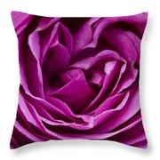 Mauve Rose Petals Throw Pillow
