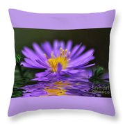 Mauve Softness And Reflections Throw Pillow