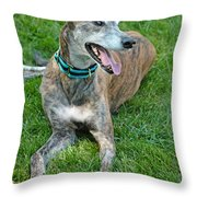 Maverick Throw Pillow by Lisa Phillips