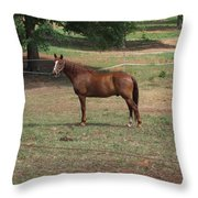 Maverick Throw Pillow