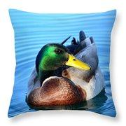 Maverick Mallard Throw Pillow