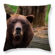 Max The Brown Bear Throw Pillow