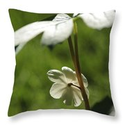 May Apple Flower Throw Pillow