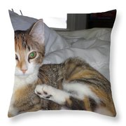 May I Be Of Service Throw Pillow