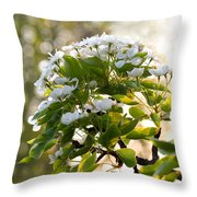 May Pear Blossoms Throw Pillow
