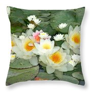 May Pond Throw Pillow
