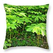 Mayapple Plants Throw Pillow