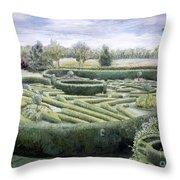 Maze Throw Pillow