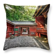 Maze Of Beauty Throw Pillow