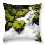 Mccord Creek, Columbia Gorge Throw Pillow