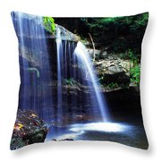 Mccoy Falls Birch River Throw Pillow