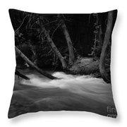 Mcdonald River   #1983 Throw Pillow