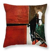 Mcduffy Throw Pillow