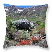 Mcgee Creek Wildflowers Throw Pillow