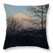 Mclaughlin Late Winter Day Throw Pillow