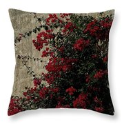 Mdina Throw Pillow