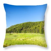 Meadow And Forest Throw Pillow