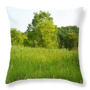 Meadow Blossoms Throw Pillow