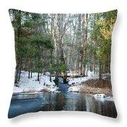 Meadow Brook Pond 1 Throw Pillow
