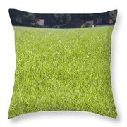 Meadow In City Park Boschveld Arnhem Netherlands Throw Pillow