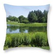 Meadow Lake Throw Pillow