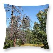 Meadow Over Oak Creek Canyon  Throw Pillow