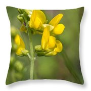 Meadow Vetchling Yellow Flower Throw Pillow