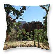 Meadow Zion Park Throw Pillow